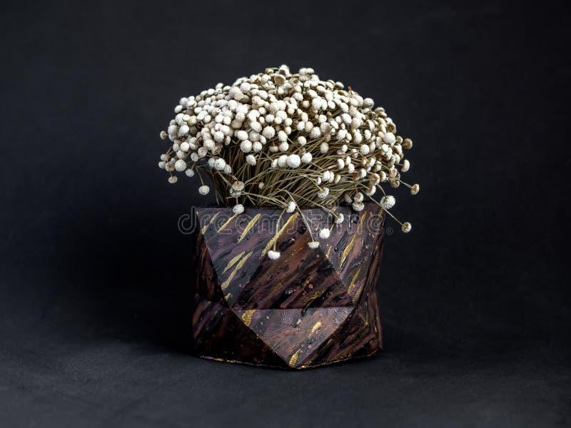 El modelo de madera de Brown pintó el plantador concreto geométrico con la flor del vintage Potes concretos pintados para la deco fotografía de archivo libre de regalías
