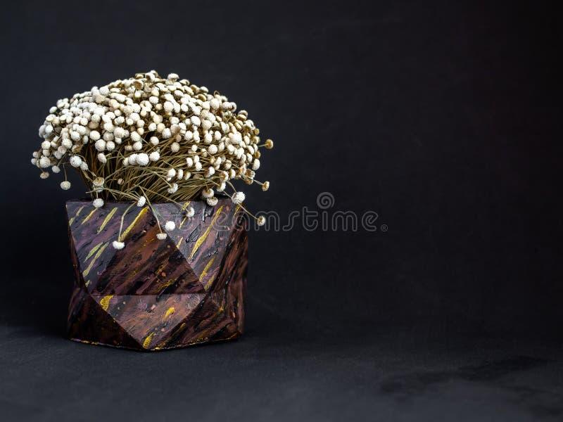 El modelo de madera de Brown pintó el plantador concreto geométrico con la flor del vintage Potes concretos pintados para la deco foto de archivo libre de regalías