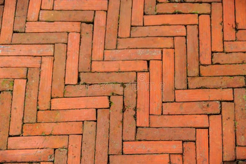 El modelo diagonal cubierto de musgo del pavimento del ladrillo en un estilo de la raspa de arenque para el fondo, los ladrillos  fotografía de archivo libre de regalías