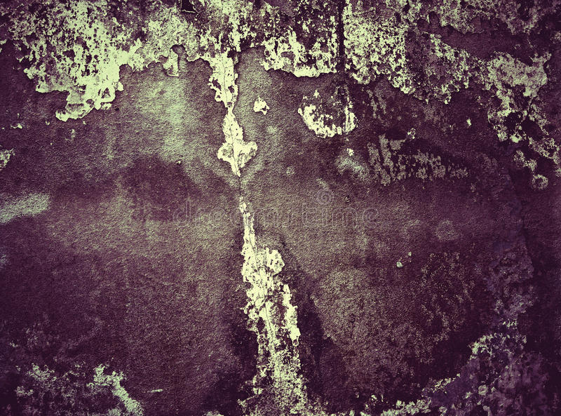 El modelo en el muro de cemento foto de archivo libre de regalías