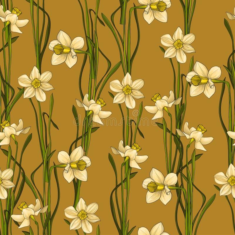 El modelo inconsútil de la elegancia con los narcisos de las flores, vector el ejemplo floral en estilo del vintage ilustración del vector