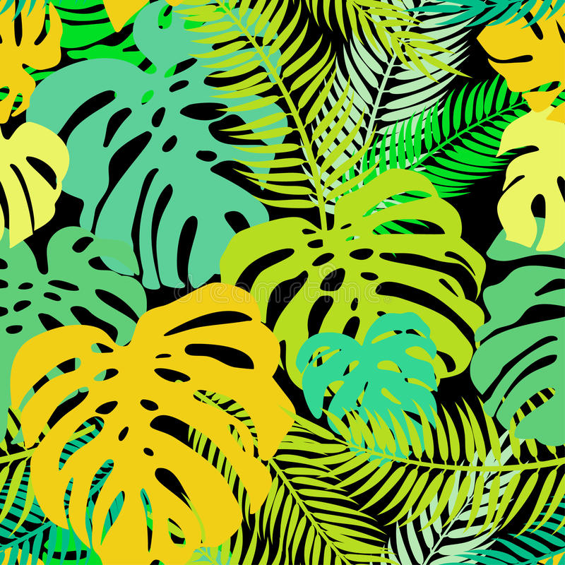 El modelo inconsútil del vector del verdor sale de monstera y de la palma Ornamento tropical exótico de la repetición libre illustration