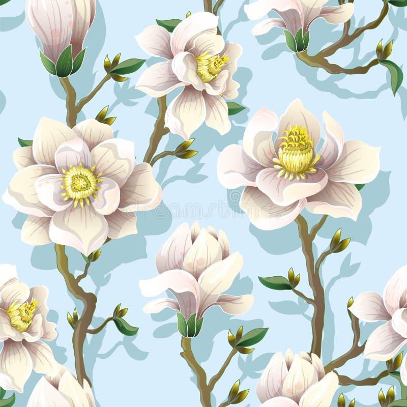 El modelo inconsútil delicado con la magnolia florece en un fondo azul Ilustración del vector libre illustration