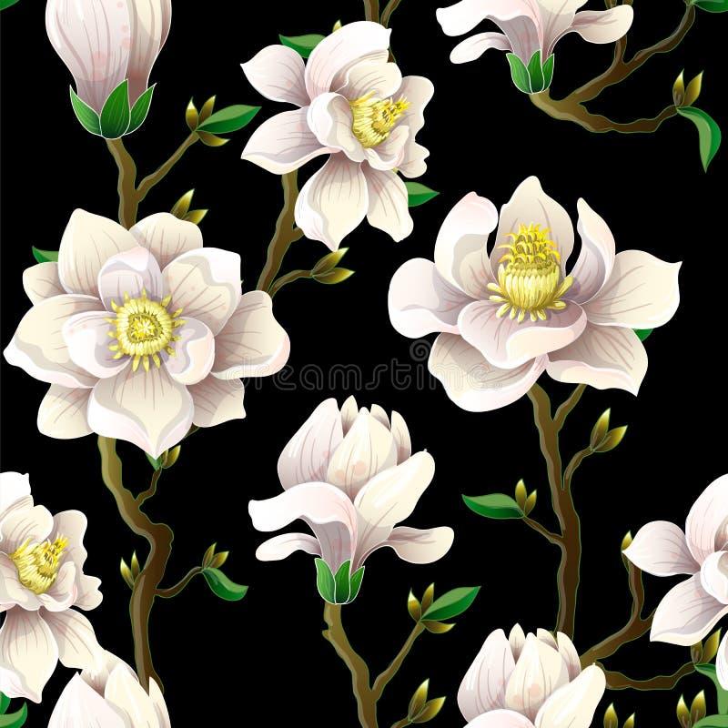 El modelo inconsútil delicado con la magnolia florece en un fondo negro libre illustration