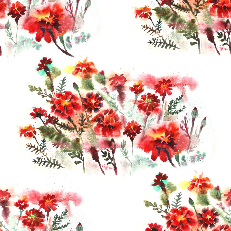 El modelo inconsútil floral en el fondo blanco con la maravilla florece watercolor stock de ilustración