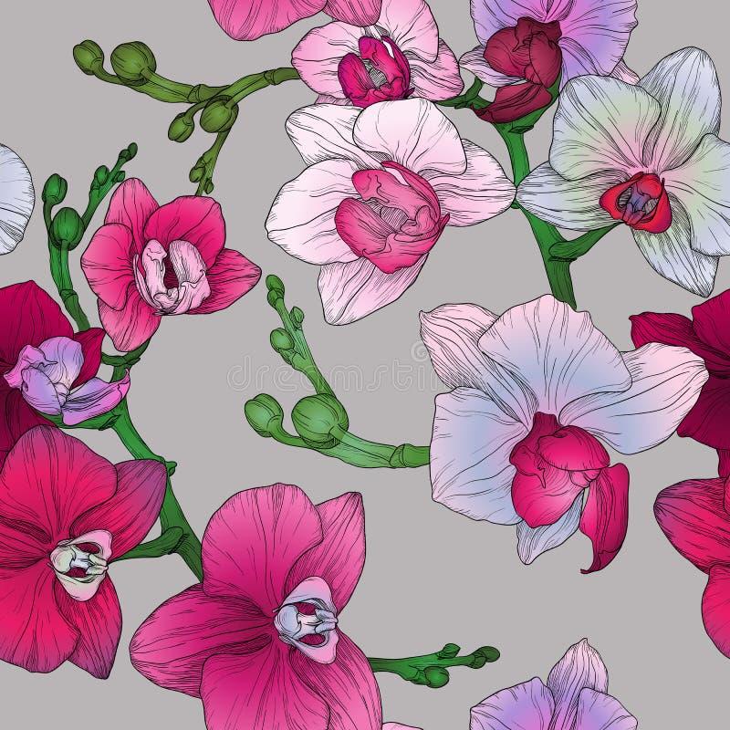 El modelo inconsútil floral tropical con la orquídea del dibujo de la mano florece libre illustration