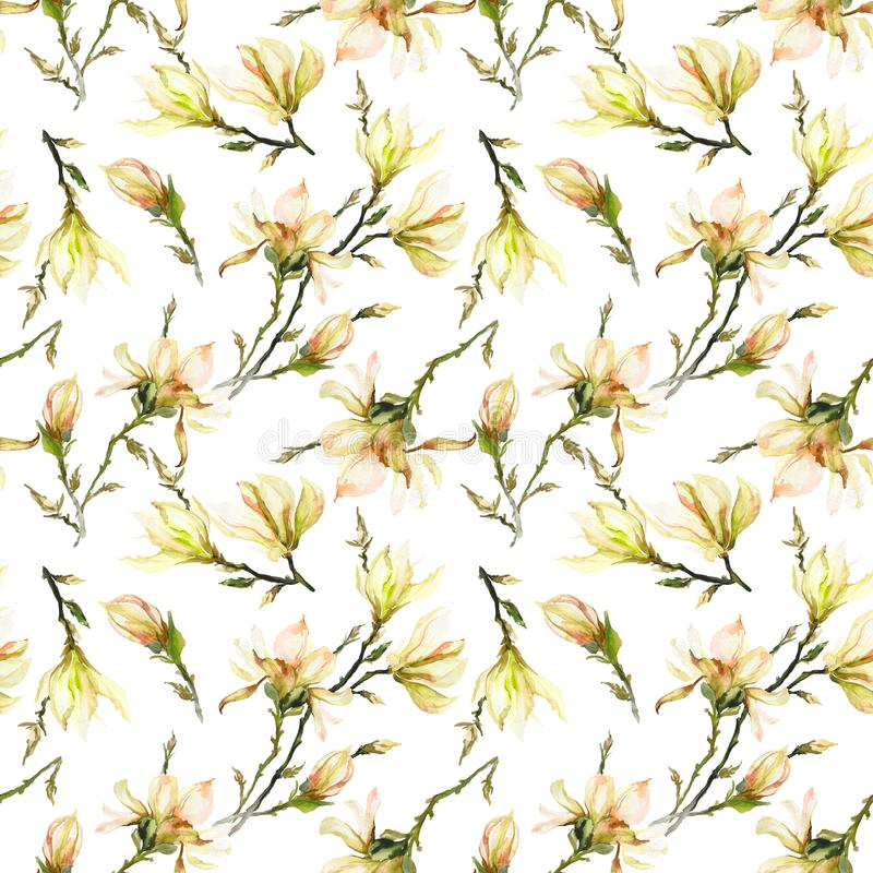 El modelo inconsútil hecho de magnolia amarilla florece en una rama en el fondo blanco Pintura de la acuarela Pintado a mano ilustración del vector