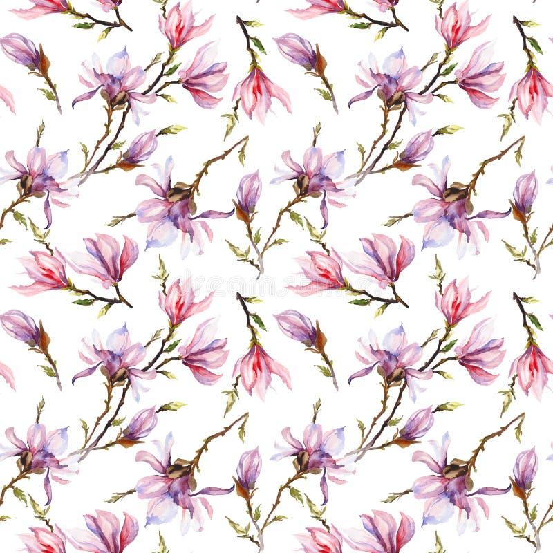 El modelo inconsútil hecho de magnolia rosada florece en una rama en el fondo blanco Pintura de la acuarela Pintado a mano libre illustration