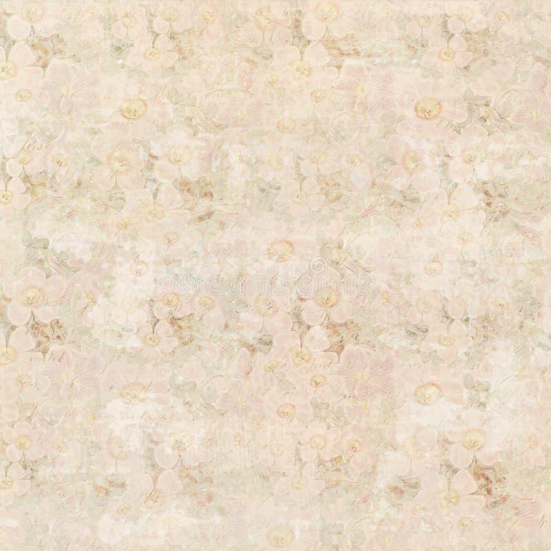El modelo suave del fondo del estampado de flores del vintage del rosa en colores pastel y del beige diseña libre illustration