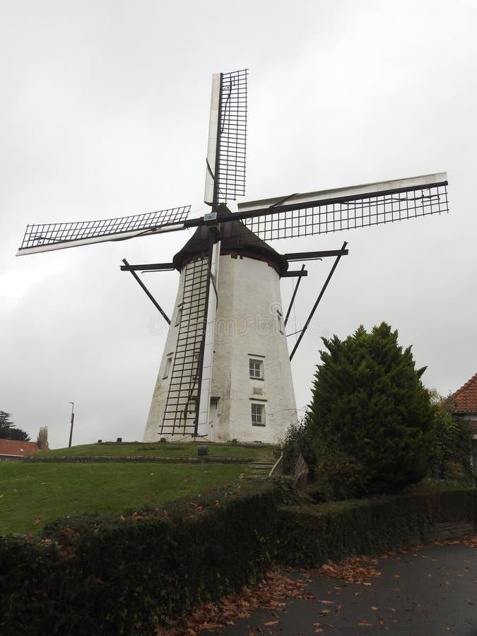 El molino blanco - St Niklaas - Bélgica fotos de archivo