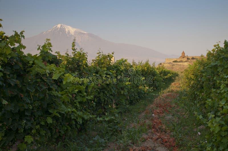 El monasterio de Khor Virap con la montaña de Ararat. imagen de archivo