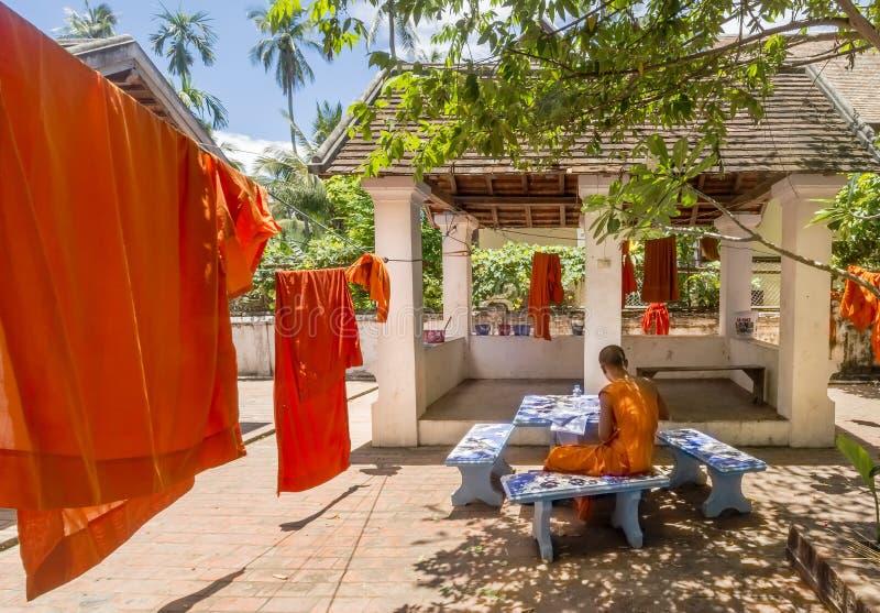 El monje budista joven estudia al lado de las sotanas anaranjadas estiradas hacia fuera en el sol para secarse en Luang Prabang,  fotos de archivo