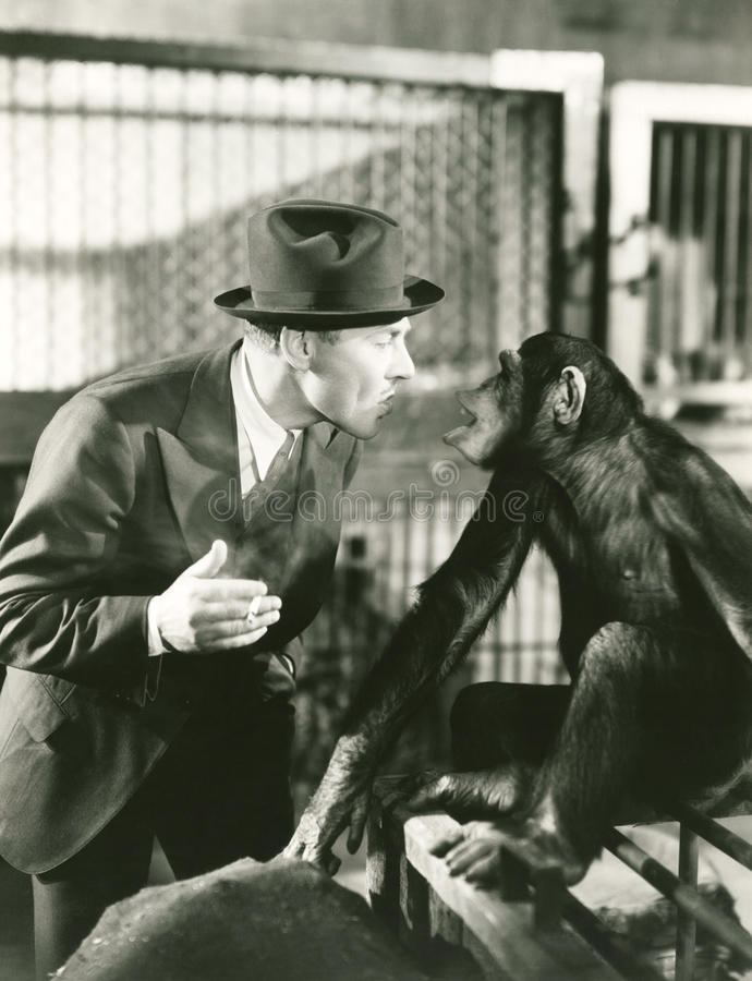 El Monkeying alrededor fotos de archivo