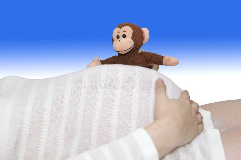 El mono del juguete mira a escondidas sobre el vientre embarazada rayado blanco fotos de archivo