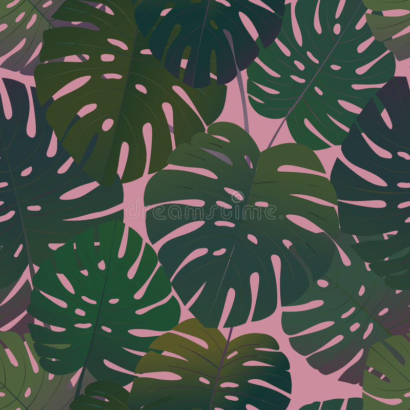 El monstera tropical de la palma deja el modelo inconsútil ilustración del vector