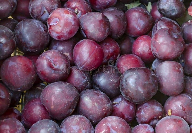 El montón de muchos ciruelo maduro da fruto, se puede utilizar como fondo fotografía de archivo libre de regalías