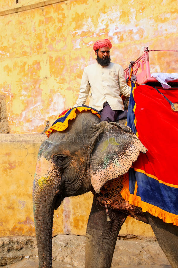 El montar a caballo del Mahout adornó el elefante en la trayectoria del guijarro a Ambe fotografía de archivo libre de regalías