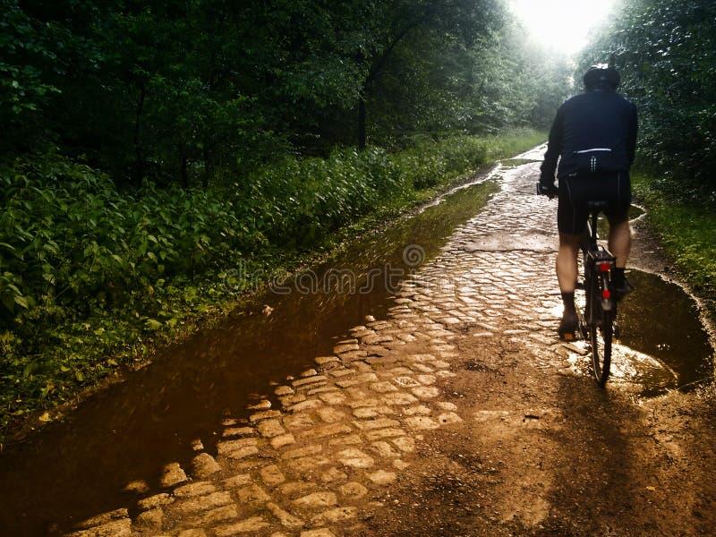 El montar en bicicleta en el camino del adoquín imagen de archivo libre de regalías