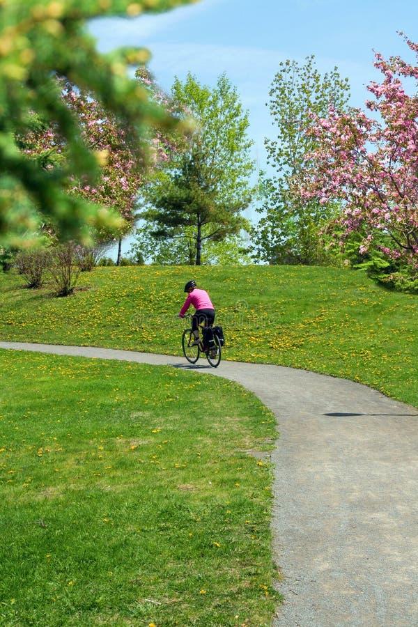 El montar en bicicleta en parque. foto de archivo