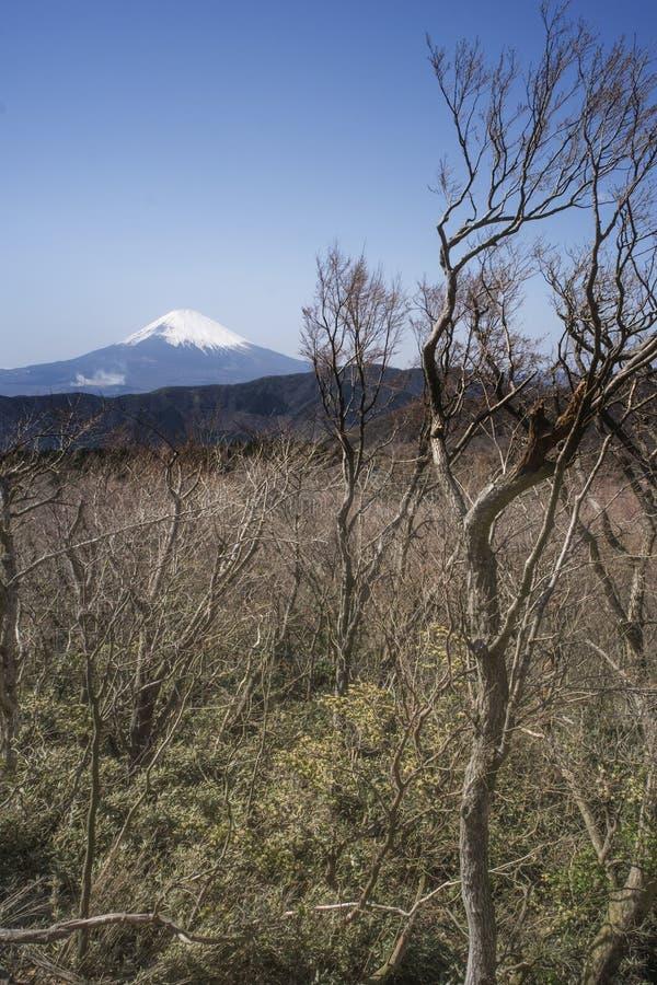 El monte Fuji imagenes de archivo
