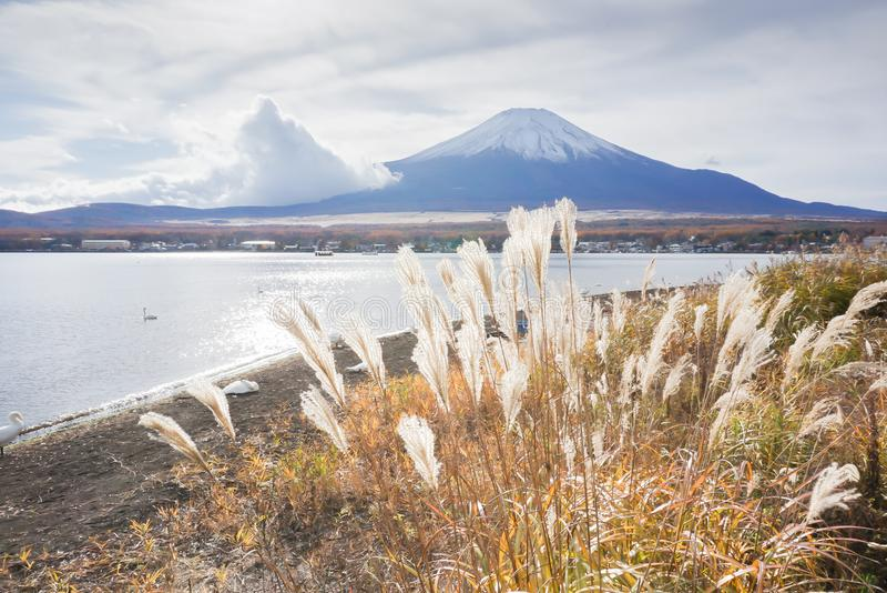 El monte Fuji en el lago Yamanaka en la estaci?n del oto?o de Jap?n fotografía de archivo libre de regalías
