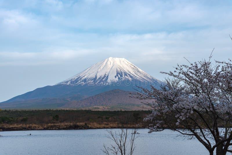 El monte Fuji o Mt Fuji, el patrimonio mundial, visión en el Shoji del lago (Shojiko) Región del lago fuji cinco imagen de archivo libre de regalías