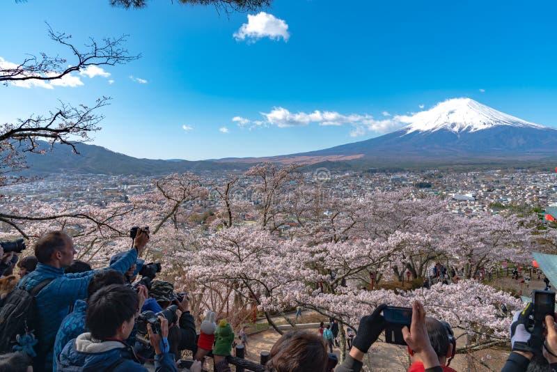 El monte Fuji vio de detrás la pagoda de Chureito en flores de cerezo de la plena floración foto de archivo libre de regalías