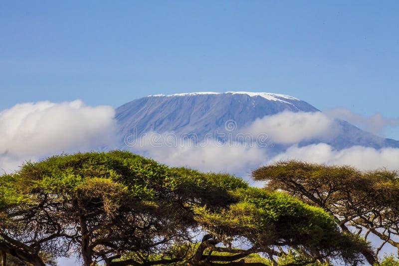 El monte Kilimanjaro, la montaña más alta de África fotos de archivo