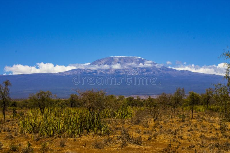 El monte Kilimanjaro, la montaña más alta de África fotografía de archivo