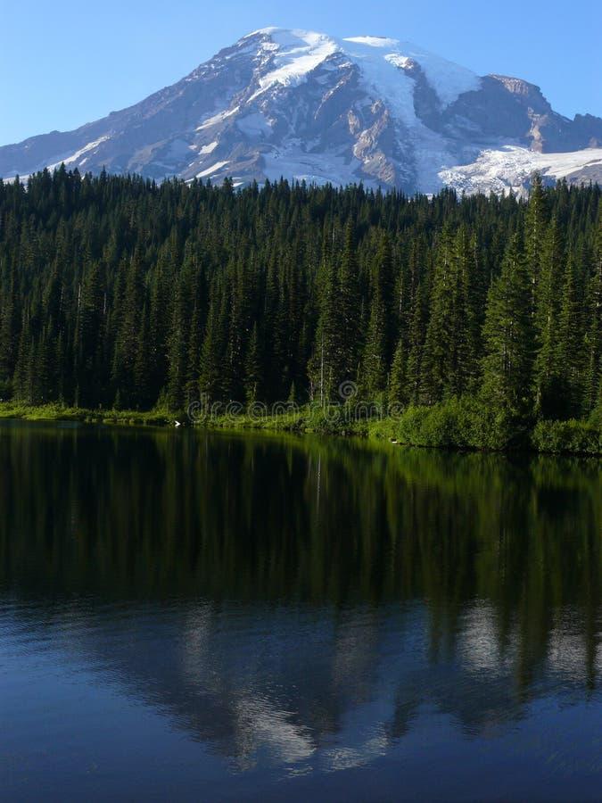 El Monte Rainier con la reflexión imagen de archivo libre de regalías
