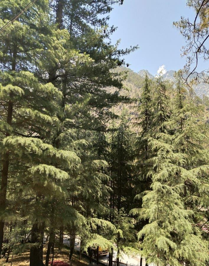 El Mountain View fotos de archivo libres de regalías