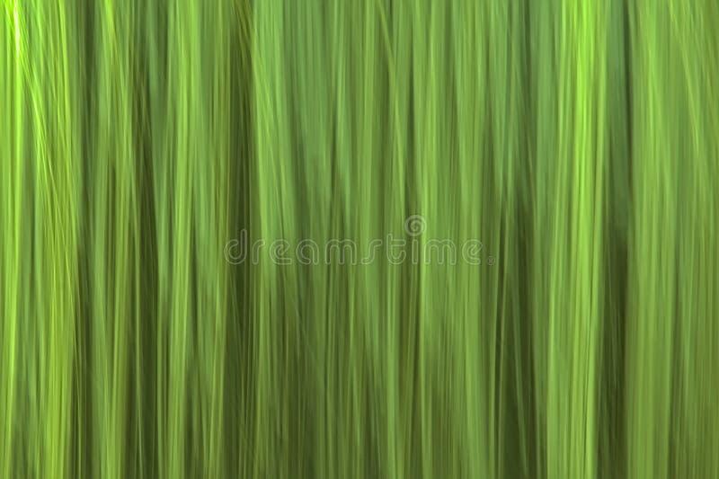 El movimiento del extracto empañó el fondo verde fotos de archivo
