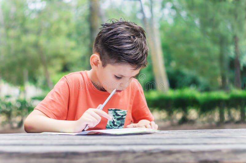 El muchacho aprende leer y escribir en el parque Días de fiesta de escuela de verano imagen de archivo libre de regalías