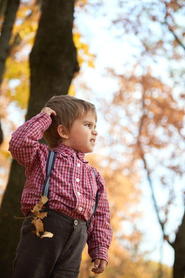 El muchacho del niño está caminando en parque de la ciudad del otoño Árboles amarillos brillantes imagenes de archivo