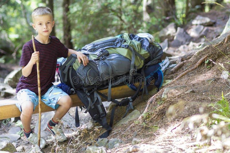 El muchacho del pequeño niño con los caminantes hace excursionismo viajar en bosque fotos de archivo