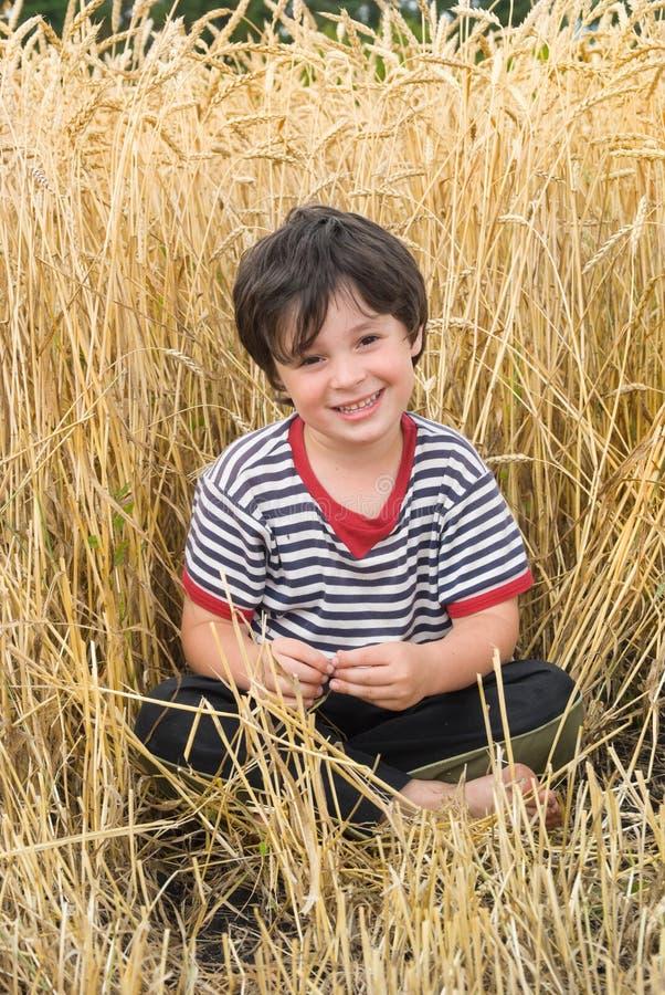 El muchacho en campo foto de archivo libre de regalías
