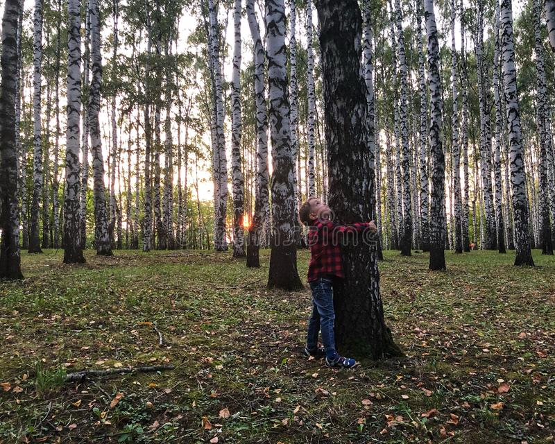 El muchacho está abrazando un árbol fotografía de archivo libre de regalías
