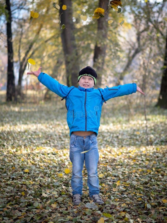 El muchacho feliz lanza las hojas en parque del otoño imagenes de archivo