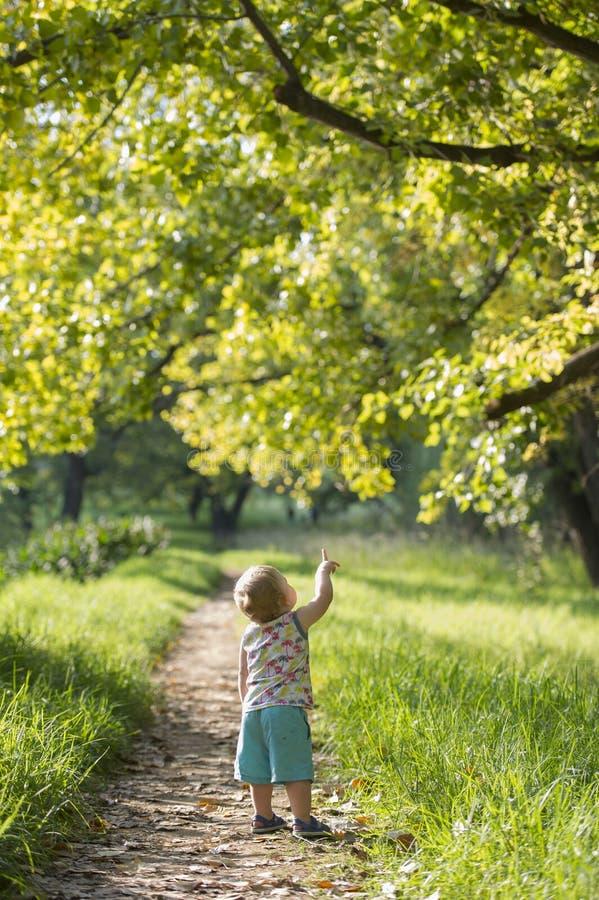 El muchacho joven llenó de maravilla mientras que iba para un paseo fotos de archivo