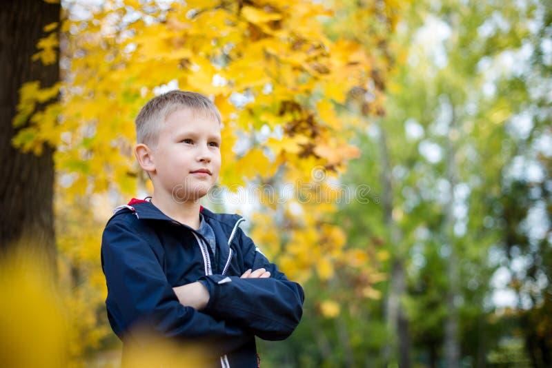 El muchacho lanza las hojas de otoño Ni?o alegre Parque, día del otoño imagen de archivo