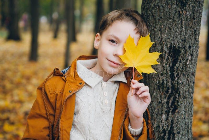 El muchacho lindo camina y presenta en un parque colorido del otoño imagen de archivo libre de regalías