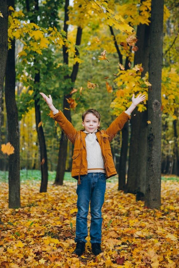 El muchacho lindo camina y presenta en un parque colorido del otoño fotos de archivo libres de regalías