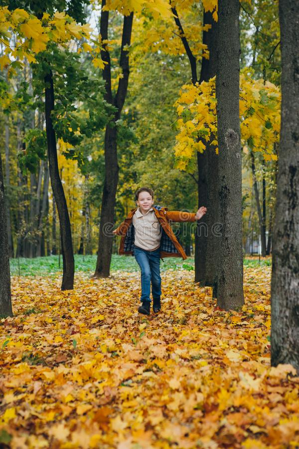 El muchacho lindo camina y presenta en un parque colorido del otoño imágenes de archivo libres de regalías
