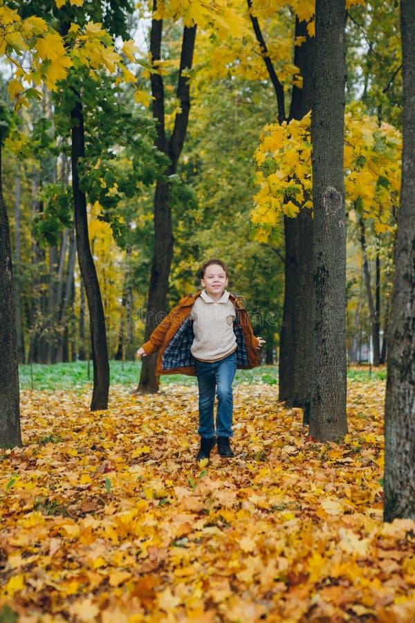 El muchacho lindo camina y presenta en un parque colorido del otoño fotografía de archivo