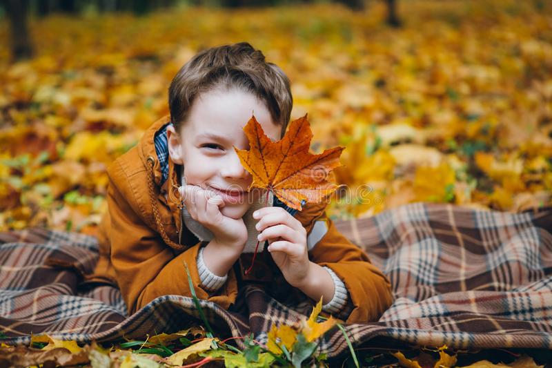 El muchacho lindo camina y presenta en un parque colorido del otoño foto de archivo