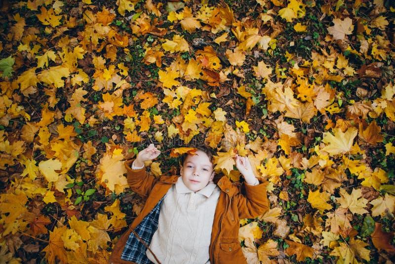 El muchacho lindo camina y presenta en un parque colorido del otoño fotografía de archivo libre de regalías