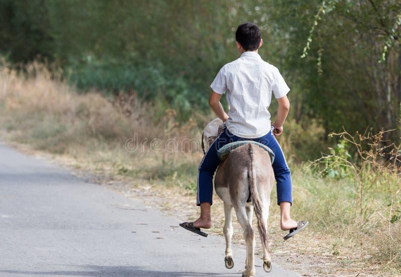 El muchacho monta en un burro en el camino fotos de archivo libres de regalías