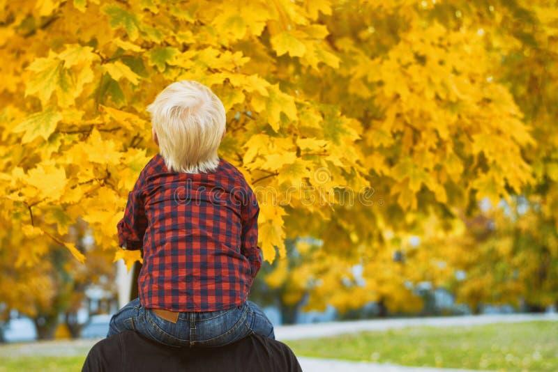 El muchacho rubio en una camisa de tela escocesa se sienta en los hombros de su padre Visi?n posterior Concepto del oto?o fotos de archivo