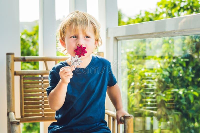 El muchacho sostiene los smoothies de una fruta del dragón con una hoja de la menta y una paja de beber fotografía de archivo