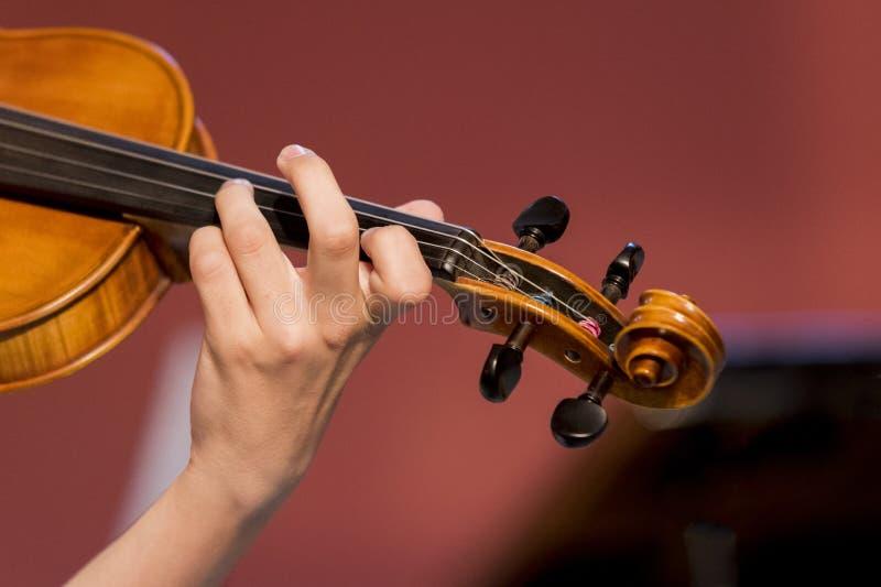 El muchacho toca el violín foto de archivo